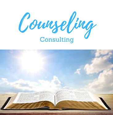 Counseling Consulting